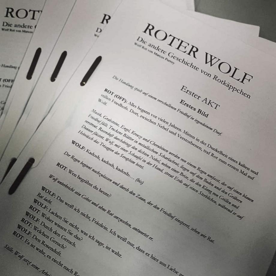 Roter Wolf. Foto: Dali Moustache