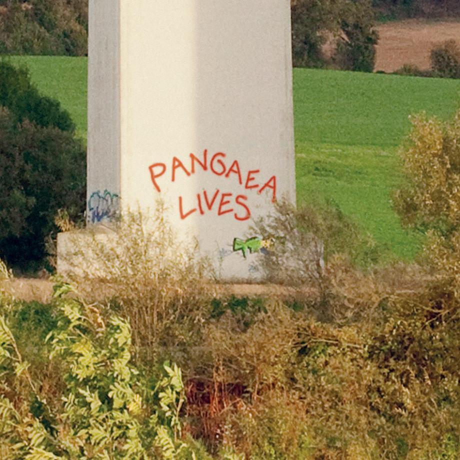 Pangaea lives